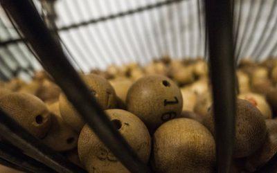 Compra aquí la lotería solidaria SOTERMUN